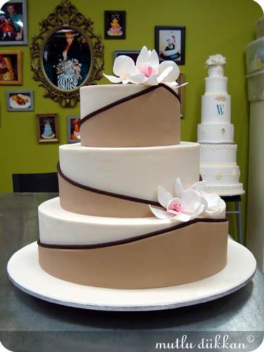 PLANET CAKE VE SYDNEY - IV